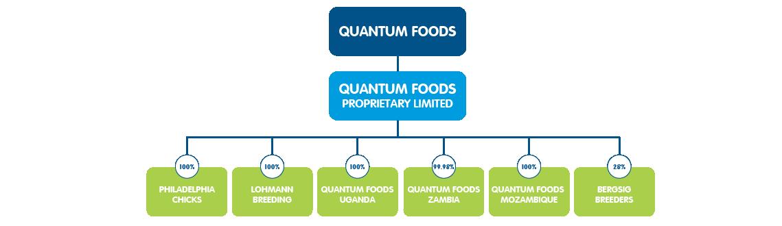 quantum-foods-company-structure-02